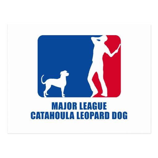 Catahoula Leopard Dog Postcards