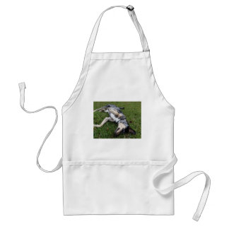 Catahoula Leopard Dog Rolling in Grass Adult Apron