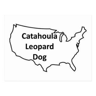 catahoula leopard dog United-States-Outline.png Postcard