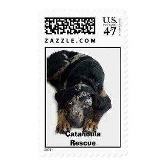 Catahoula Rescue, Postage