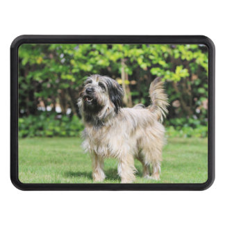 Catalan Sheepdog - Peppa Tow Hitch Cover