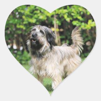 Catalan Sheepdog - Peppa Heart Stickers