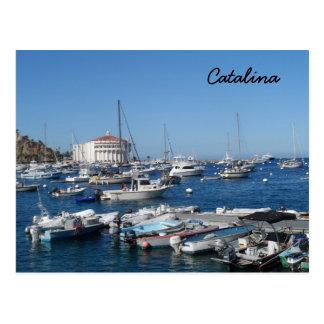 Catalina, California Postcard