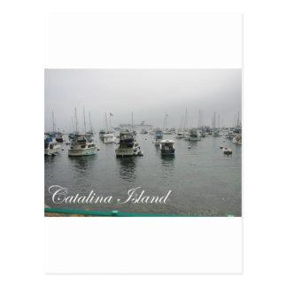Catalina Island 4 Postcard