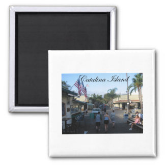 Catalina Island 6 2 Inch Square Magnet
