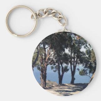 Catalina Island Keychain