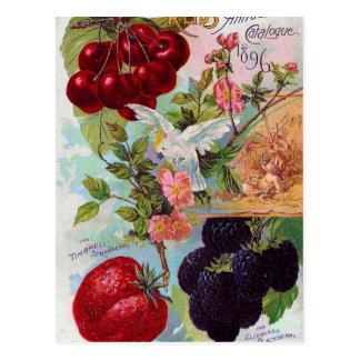 Catálogo anual 1896 de la fruta postal