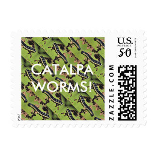 Catalpa Worms Camo Catfish Fishing Postage