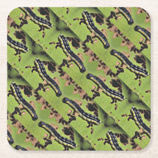 Catalpa Worms Camo Catfish Fishing Square Paper Coaster
