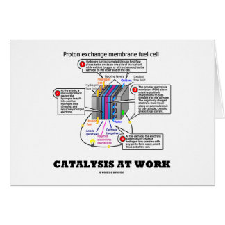 Catalysis At Work (Proton Exchange Membrane Fuel) Card