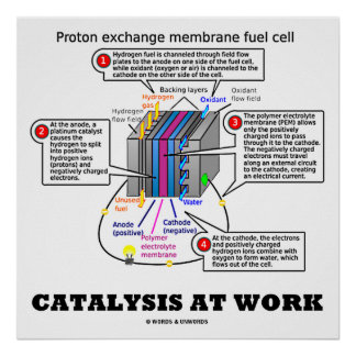 Catalysis At Work (Proton Exchange Membrane Fuel) Poster