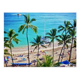 Catamarán de Waikiki Tarjeta Postal