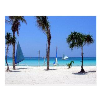 Catamaran on the Beach - Sunny Day Postcard