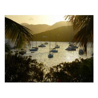 Catamaranes y veleros tarjeta postal