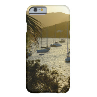 Catamarans and sailboats barely there iPhone 6 case