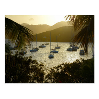 Catamarans and sailboats postcard