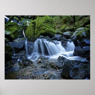 Cataract Falls, Mt. Tamalpais Poster