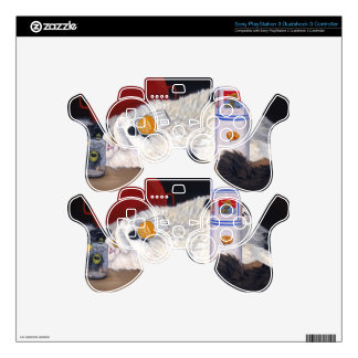 Catatonic Decal For PS3 Controller