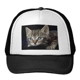 Catatonic Trucker Hat