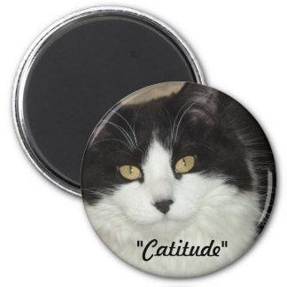 Catatude Cat Attitude Humor Magnet
