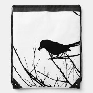 Catbird blanco y negro en un árbol mochila