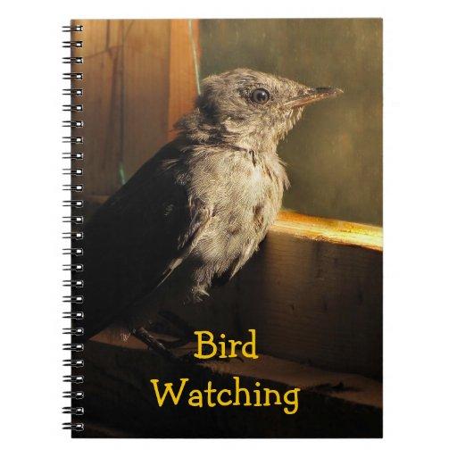 Catbird del bebé libros de apuntes