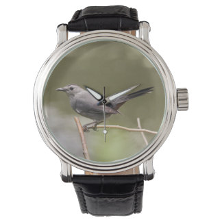 Catbird gris relojes de pulsera