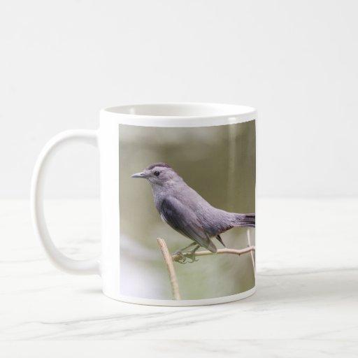 Catbird gris taza