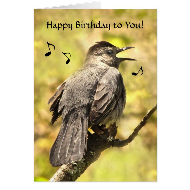 Catbird Sings Happy Birthday Card