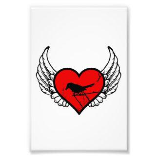 Catbirds del ángel, corazón con alas silueta de cojinete