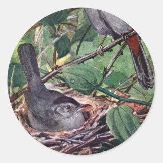Catbirds grises de la jerarquización pegatina redonda