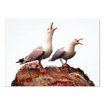 Catcalling Gulls 5x7 Paper Invitation Card