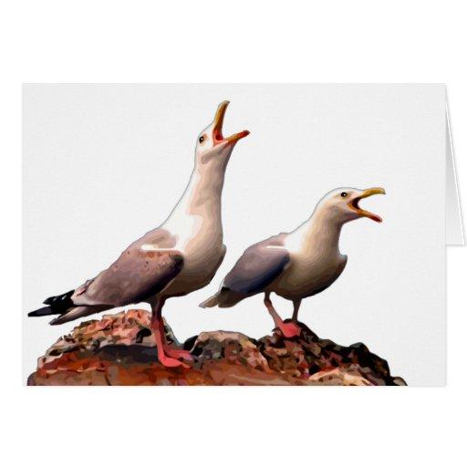 Catcalling Gulls Greeting Card