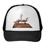 Catcalling Gulls Hats