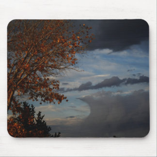 Catch A Wave Mouse Pads