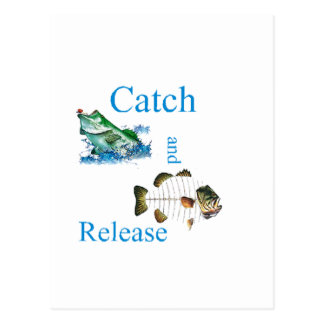 Catch and release fishing postcard