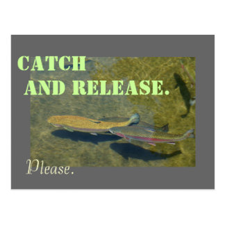 Catch and Release postcards Rainbow Trout Fishing