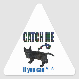 Catch me if you can! triangle sticker