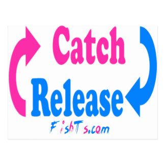 Catch n Release pink/blue Postcards