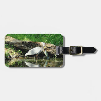 Catch of the Day Luggage Tags