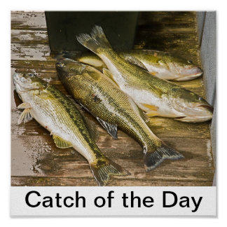 Catch of the Day Poster
