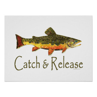 Catch & Release Trout Fishing Poster