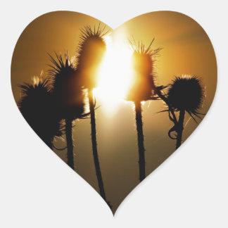 Catch the sun heart sticker