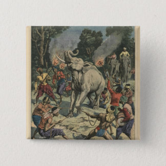Catching a white elephant in Siam Pinback Button