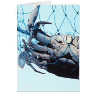 Catching Blue Crab Card