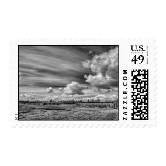Catching Clouds (B&W) Postage