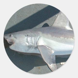 Catching Sharks Classic Round Sticker