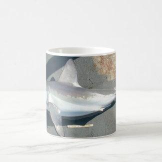 Catching Sharks Classic White Coffee Mug