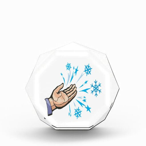 Catching Snow Flakes Awards