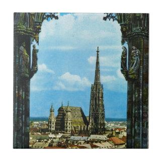 Catedral de Austria, Viena, St Stephen Teja
